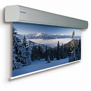 Projecta GiantScreen Electrol 438x700 см
